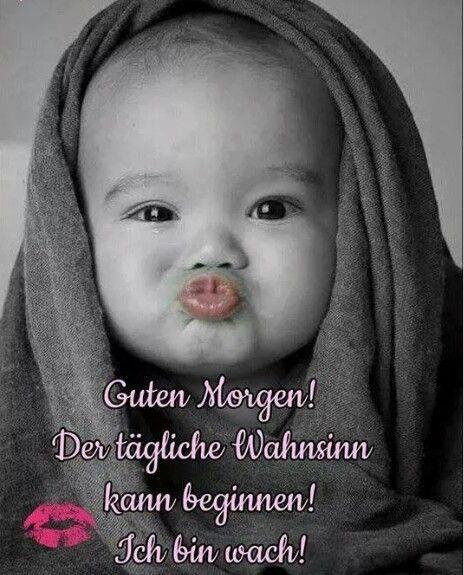 Guten Tag Bilder Lustig Kostenlos Bilder Kostenlos Downloaden Flirty Funny Love Good Morning Quotes Good Morning Funny