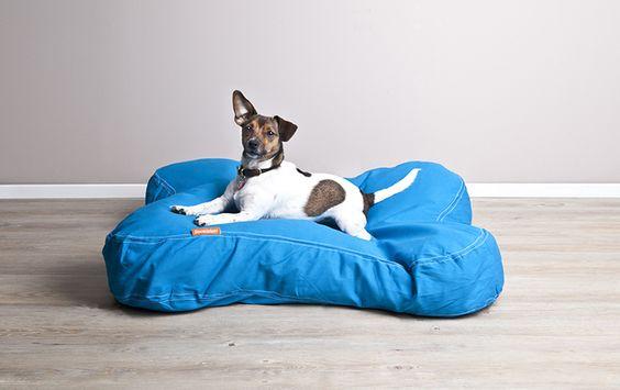 ideias de bandana para cachorros - Pesquisa Google