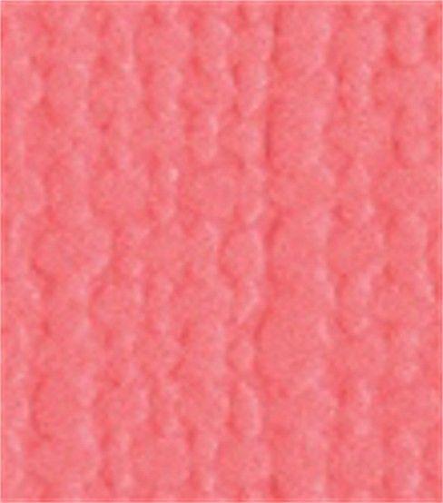 Bazzill Monochromatic Cardstock Paper 8.5''x11''