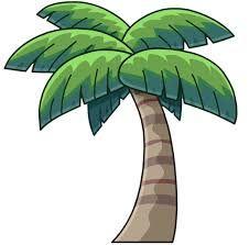imagenes de palmas de coco - Buscar con Google