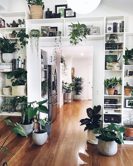 You could say we are sightly jealous about this #PlantLife situation. Would you love this many plants in your home?! 🌿😍 .…