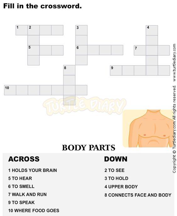Vocabulary Crossword Kindergarten 4 - esl-efl Worksheets ...