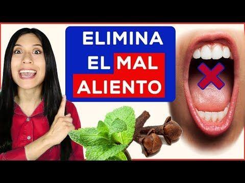 Como Eliminar El Mal Aliento 5 Remedios Fácil Y Rápido Youtube Eliminar El Mal Aliento Mal Aliento Quitar El Mal Aliento