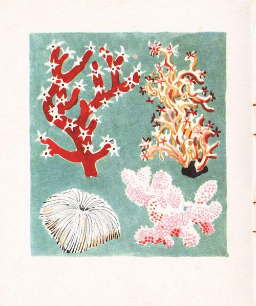 Le Royaume De La Mer illustrated by Rojan, 1948.