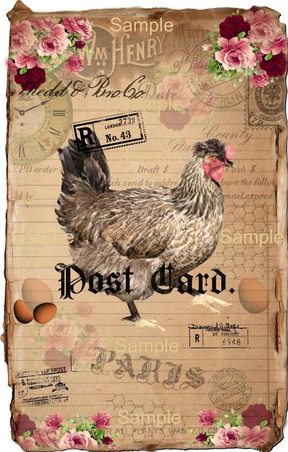 Vintage Chicken.....need this in my kitchen or dining.....yes I do....: