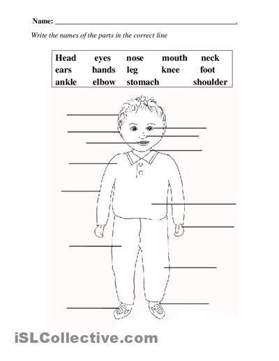 Printables Elementary Worksheets elementary worksheets davezan worksheet scalien