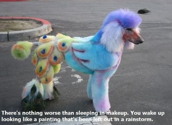 Nothing worse than sleeping in makeup. You wake up looking like a painting that's been left out in a rainstorm.
