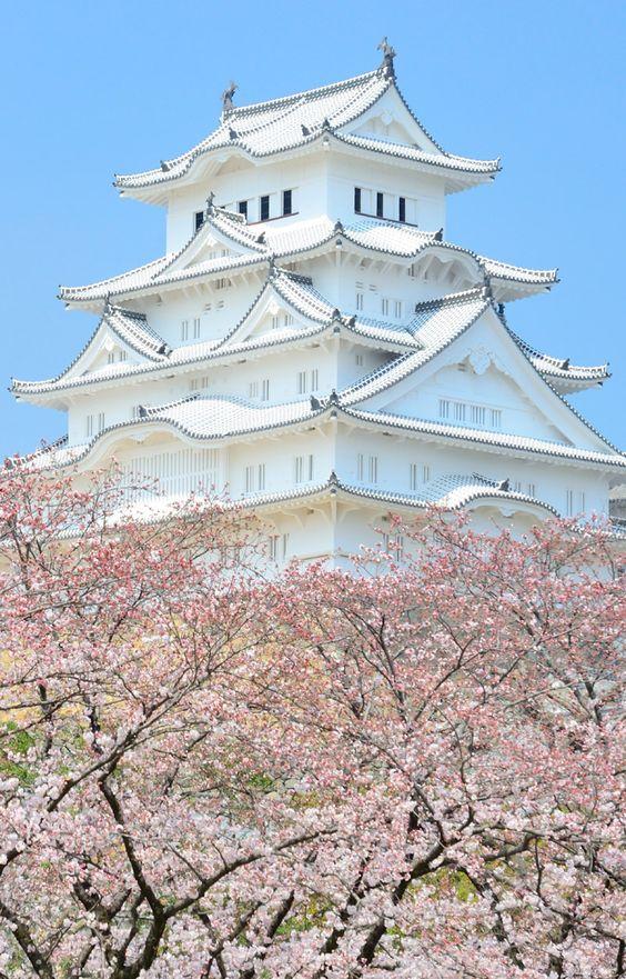 Besonders während des Kirschblütenfest Hanami ist die Schönheit der historischen Burganlage Himeji unbeschreiblich.