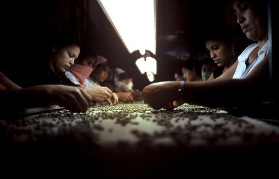 Honduras Leticia Freire 3 Assim se constrói um planeta desigual