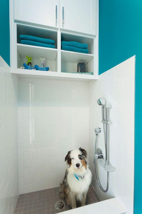 12 Genius Mudroom Dog Wash Station Ideas For Pet Lovers Dog
