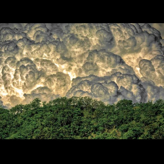It's like a real-life Van Gogh painting  Top 13 Exposure Shots of 2013 | Outdoor Photography | OutsideOnline.com