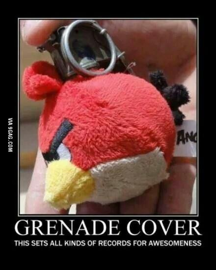 Angry bird in the hole