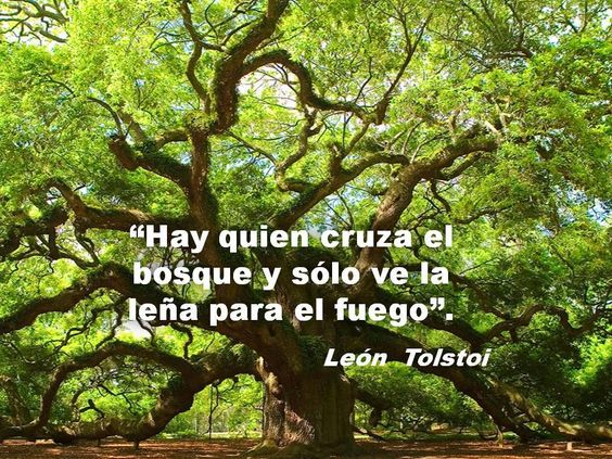 10 frases de León Tolstói