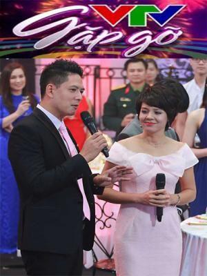 Phim Gặp Gỡ VTV , Giao Lưu Chào Năm Mới  2016