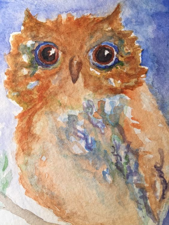 A personal favorite from my Etsy shop https://www.etsy.com/listing/233466900/big-eyes-owl-original-painting