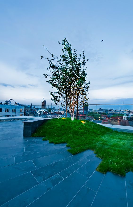 gardens green roofs and terrace on pinterest. Black Bedroom Furniture Sets. Home Design Ideas