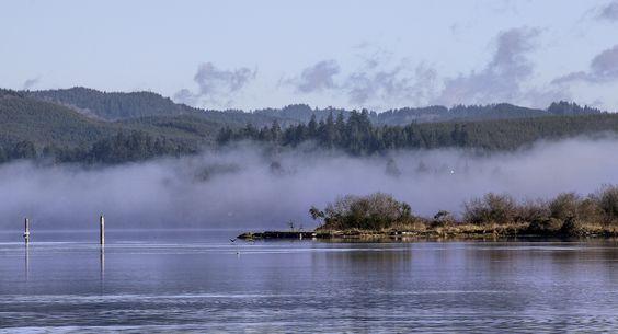 Morning fog in Coos Bay   © Sheila Sund/Flickr