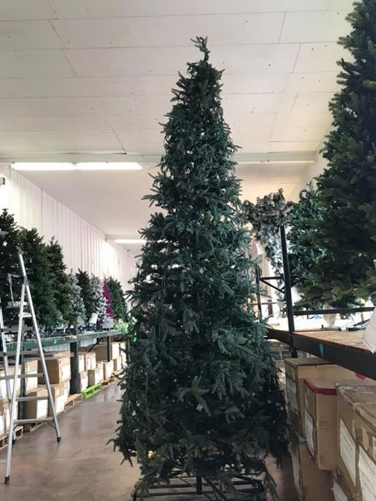 Christmas In July Ideas For Work.Christmas In July 12 Ft Tree And Only 50 00 Lights Do Not