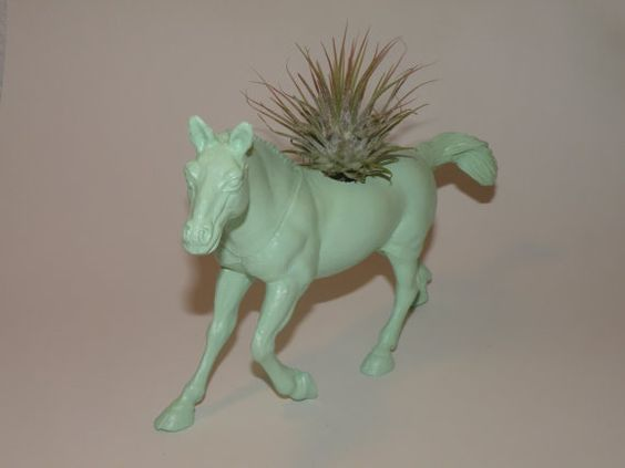 air plant in mint green horse planter #mint