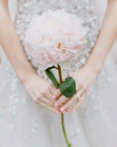 Bouquet Sposa Lungo.Ma Quanto E Bello Questo Bouquet Sposa Con Fiore Singolo Noi Ci
