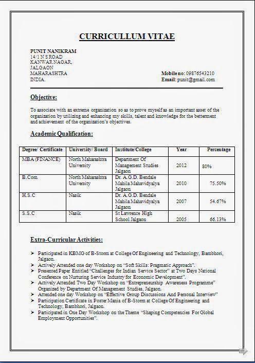 Example of a good CV   example of cv