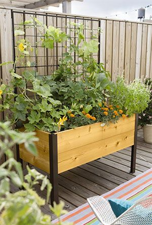 Elevated Cedar Planter Box Space Maker Pivoting Trellis 2x4 In 2020 Vegetable Planters Cedar Planters Vegetable Trellis