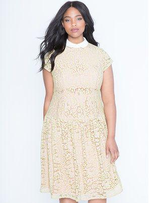 Lace Trumpet Dress with Poplin Collar