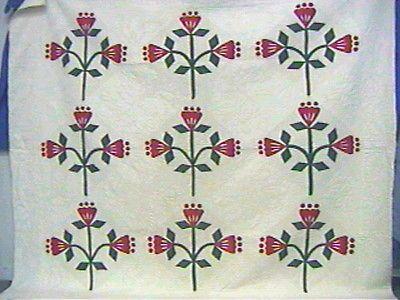 Superb-Antique-ca-1900-Applique-Quilt-Reverse-Applique-FINE-Quality-Exclnt-Cond