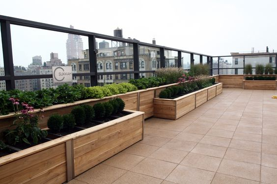 The Meyerson Family Roof Terrace