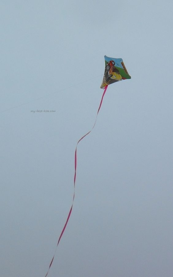 This small kid's Diamond kite was seen at the Adelaide Kite Festival 2013. Seems to be flying OK despite the tail being a little hung-up near the tail end! T.P. (my-best-kite.com)
