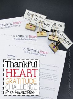 Here's a simple 30 Day Gratitude Challenge that just might be the thing you need to move into a happier healthier life! Download the free calendar to start!:
