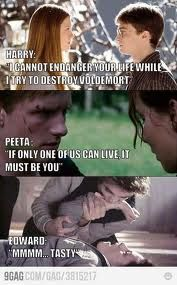 HP & HG > Twilight.