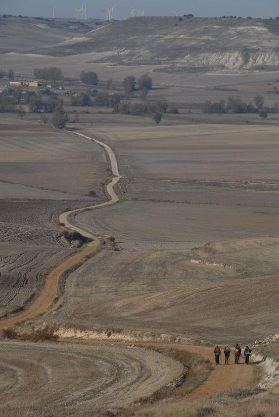 El camino de Santiago: