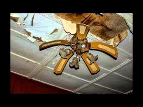 Fanimation Museum Video Youtube Ceiling Fan Parts Ceiling Fan Hampton Bay