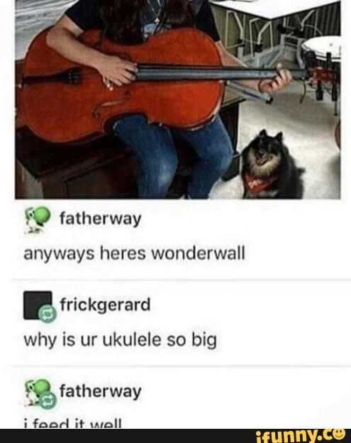 So Fatherway Anyways Heres Wonderwall Re Why Is Ur Ukulele So Big 2 Fatherway I Faad I Wall Ifunny Stupid Funny Memes Funny Relatable Memes Tumblr Funny