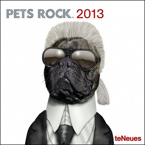 Pets Rock Mini Wall Calendar: The faces are famous, but are you really seeing who you think you are. From John Wayne to Justin Beiber, this Pets Rock mini wall calendar puts a distinctly canine and feline twist on some faces that you thought you knew, with hilarious results.  http://www.calendars.com/Satire/Pets-Rock-2013-Mini-Wall-Calendar/prod201300002563/?categoryId=cat00052=cat00052