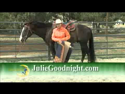 Quick Tip: Where to Place the Saddle Pad Under Your Saddle