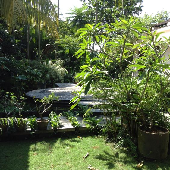 Green, green grass of home...a lush #garden in the home of Malaysia's foremost dance guru