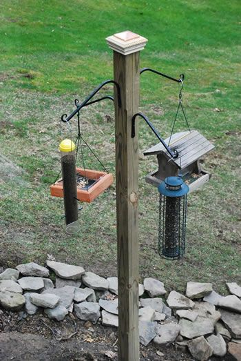 Build your own bird feeding station and watch your neighborhood fill up!