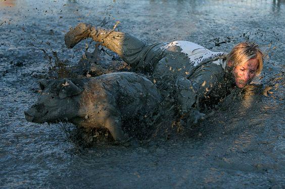 Una de las tradiciones más extrañas del mundo: captura de cerdos bañados en lodo y aceite