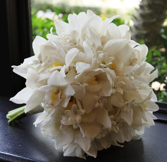 orchid and stephanotis bouquet