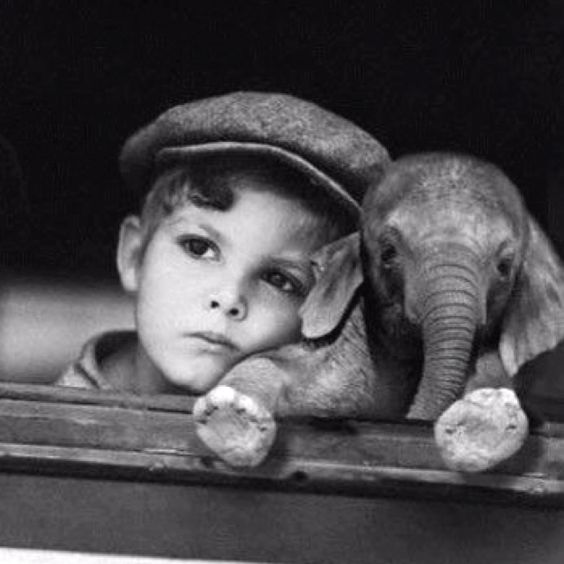 Ah! I so want to see a baby elephant with my own eyes!