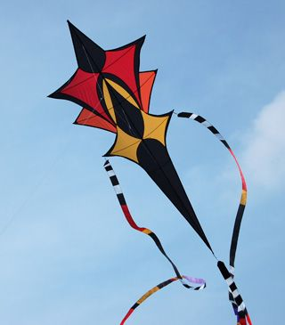 Delightful ochre color palette on this kite.Multiple wings and an extended tail portion turn the kite into a low-aspect ratio design. With those tails as well, I can imagine this kite is a very steady flier. T.P. (my-best-kite.com)