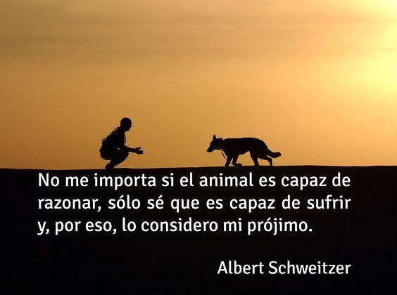 Frase de amor a los animales - Nuestro prójimo.: