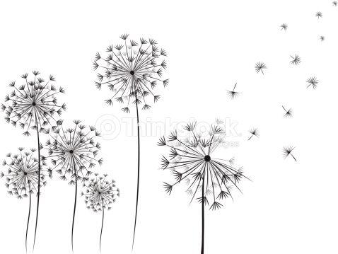 dandelion hand drawn illustration on white background simple and blumen zeichnen vektorzeichnung hund vektorgrafik palme vektor