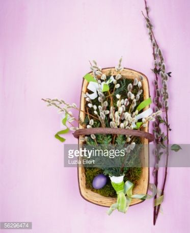 Stock Photo : Bouquet of pussy willow and Easter egg in a basket