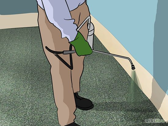How To Carpet Stairs With Pictures Wikihow Images Remove