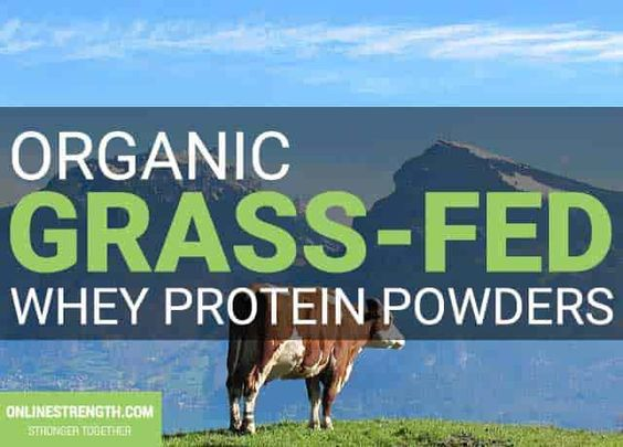 Top 3 Best Grass Fed Organic Whey Protein Powders