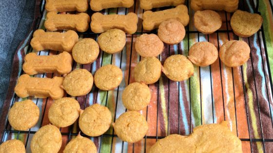 Baby Food Soft Dog Treats Recipe Soft Dog Treats Dog Biscuit