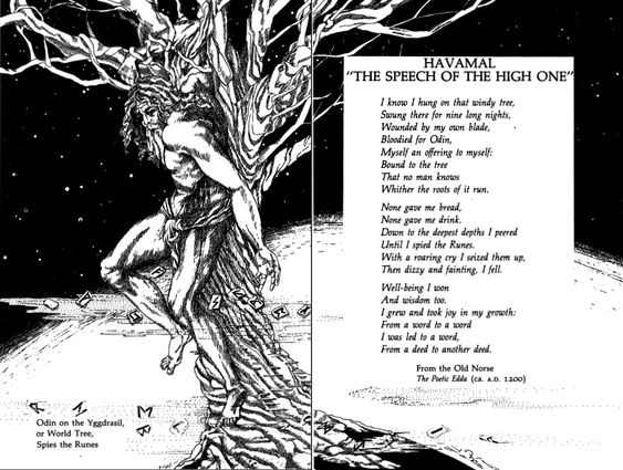 Trees The High And The O Jays On Pinterest